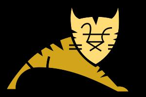 tomcat 7.0.47